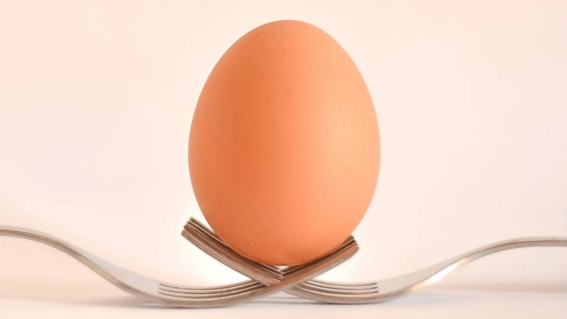 An egg on two forks